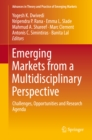 Emerging Markets from a Multidisciplinary Perspective : Challenges, Opportunities and Research Agenda - eBook
