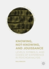 Knowing, Not-Knowing, and Jouissance : Levels, Symbols, and Codes of Experience in Psychoanalysis - eBook