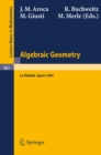 Algebraic Geometry : Proceedings of the International Conference on Algebraic Geometry Held at La Rabida, Spain, January 1981 - eBook