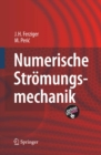 Numerische Stromungsmechanik - eBook