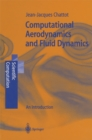 Computational Aerodynamics and Fluid Dynamics : An Introduction - eBook