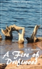 A Fire of Driftwood: A Collection of Short Stories (D. K. Broster) (Literary Thoughts Edition) - eBook