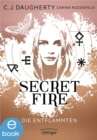 Secret Fire. Die Entflammten - eBook