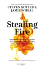 Stealing Fire - eBook