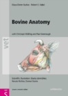 Bovine Anatomy : An Illustrated Text, Second  Edition - Book