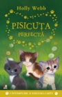 Pisicuta Perfecta - eBook