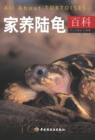 All about Tortoises - eBook