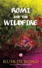 Rom and the Wildfire - Book