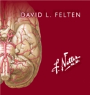 Netter. Flashcards de neurociencia - eBook