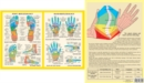Hand & Foot Reflexology -- A4 - Book