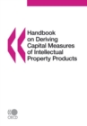Handbook on Deriving Capital Measures of Intellectual Property Products - eBook