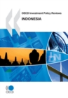 OECD Investment Policy Reviews: Indonesia 2010 - eBook