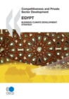 Competitiveness and Private Sector Development: Egypt 2010 Business Climate Development Strategy - eBook