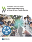 OECD Digital Government Studies The Path to Becoming a Data-Driven Public Sector - eBook