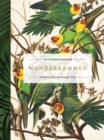 Wunderkammer : An Exotic Journey Through Time - Book