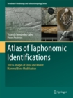 Atlas of Taphonomic Identifications : 1001+ Images of Fossil and Recent Mammal Bone Modification - eBook