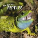 How they live... Reptiles : Learn All There Is to Know About These Animals! - eBook