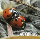 How they live... Ladybirds : Learn All There Is to Know About These Animals! - eBook