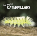How they live... Caterpillars : Learn All There Is to Know About These Animals! - eBook