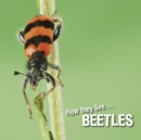 How they live... Beetles : Learn All There Is to Know About These Animals! - eBook