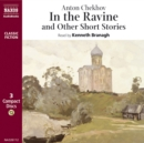 In the Ravine, and other short stories - eAudiobook