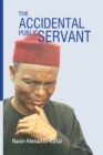 The  Accidental Public Servant - eBook