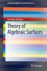 Theory of Algebraic Surfaces - eBook