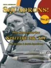 The Supermarine Spitfire Mk XIV : The Belgian and Dutch squadrons - eBook