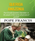 Querida Amazonia : Post-Synodal Apostolic Exhortation to the people of God and to all persons of goodwill - eBook