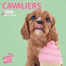CAVALIERS BY STUDIO P 2019 SQUARE WALL C, Paperback Book