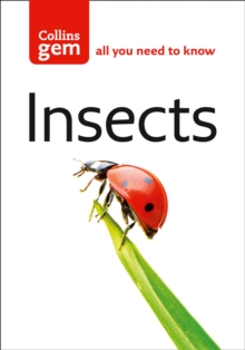 Insects, Paperback / softback Book