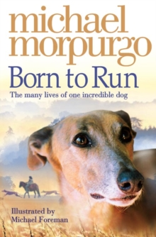 Born to Run, Paperback Book