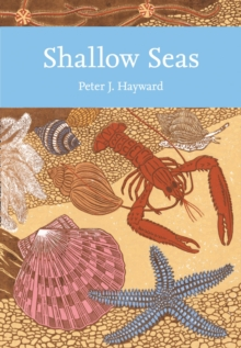 Shallow Seas, Paperback Book
