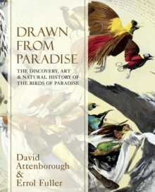 Drawn From Paradise : The Discovery, Art and Natural History of the Birds of Paradise, Hardback Book