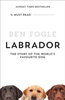 Labrador : The Story of the World's Favourite Dog, Paperback / softback Book