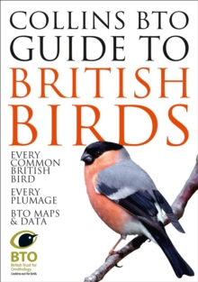 Collins BTO Guide to British Birds, Paperback / softback Book