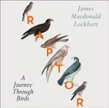 Raptor : A Journey Through Birds, eAudiobook MP3 eaudioBook
