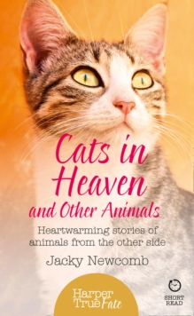 Cats in Heaven : And Other Animals. Heartwarming Stories of Animals from the Other Side., Paperback Book