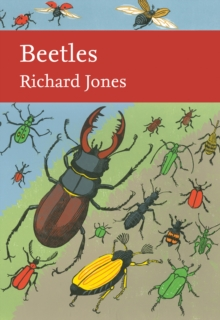 Beetles, Hardback Book