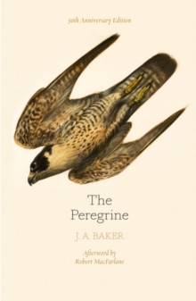 The Peregrine: 50th Anniversary Edition : Afterword by Robert Macfarlane, Paperback Book