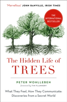 The Hidden Life of Trees : The International Bestseller - What They Feel, How They Communicate, Paperback / softback Book