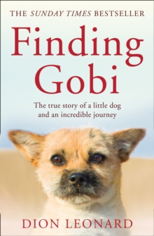 Finding Gobi (Main edition) : The True Story of a Little Dog and an Incredible Journey, Paperback Book