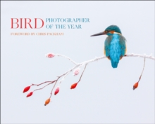 Bird Photographer of the Year : Collection 2, Hardback Book