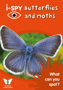 i-SPY Butterflies and Moths : What Can You Spot?, Paperback Book