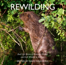 Rewilding : Real Life Stories of Returning British and Irish Wildlife to Balance, Paperback / softback Book