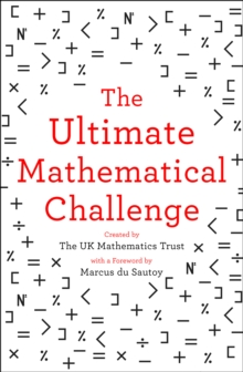 The Ultimate Mathematical Challenge : Over 365 Puzzles to Test Your Wits and Excite Your Mind, Paperback / softback Book