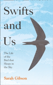 Swifts and Us : The Life of the Bird That Sleeps in the Sky, Hardback Book