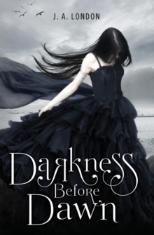 Darkness Before Dawn, Paperback / softback Book