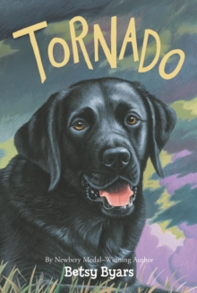 Tornado, EPUB eBook