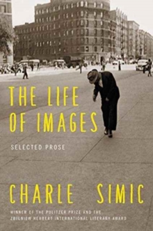 The Life of Images : Selected Prose, Paperback / softback Book